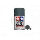 Tamiya TS-4 German Grey 100ml Acrylic Spray Paint - TS-85004
